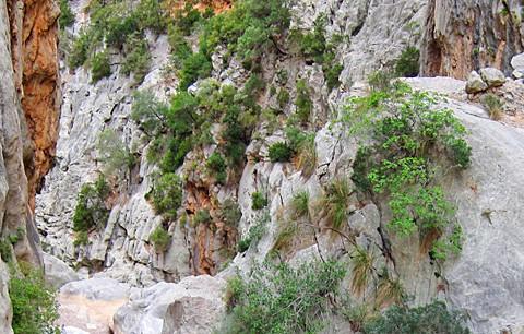 Wanderung im Torrent de Pareis