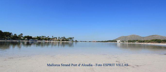 Mallorca Strand Port d'Alcudia