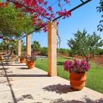 Ferienhaus Mallorca MA6630 Terrasse mit Bouganvilea