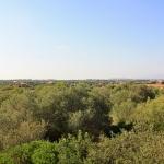 Ferienhaus Mallorca MA7420 Ausblick