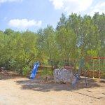 Ferienhaus Mallorca MA7420 Spielplatz