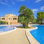 Ferienhaus Mallorca MA8300 Palme zwischen den Pools