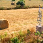 Finca-Mallorca-MA7065-Blick-auf-Felder
