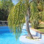 Villa Mallorca MA6651 Palme