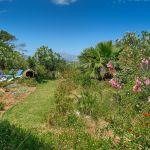 ferienhaus-florida-ma6315-garten-mit-bluhenden-buschen