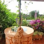 Ferienhaus Mallorca MA5208 - alter Brunnen