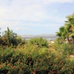 Ferienhaus Mallorca MA6315 - Garten