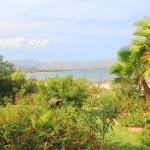 Ferienhaus Mallorca MA6315 - Garten mit Meerblick