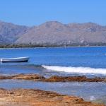 Ferienhaus Mallorca MA6315 - Meerblick