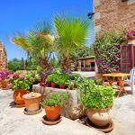 Finca Mallorca MA5832 Blumen auf der Terrasse