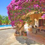 Finca Mallorca MA5832 Terrasse mit Bouganvilea