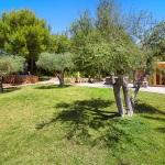 Finca S'Horta MA5656 Garten mit Olivenbäumen