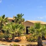 Luxus Ferienhaus Mallorca 5641 Garten mit Blumen