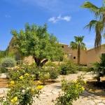 Luxus Ferienhaus Mallorca 5641 Garten mit Rosen