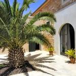 Luxus Ferienhaus Mallorca 5641 Terrasse mit Palme