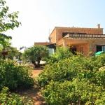 Ferienhaus Mallorca behindertengerecht MA5320  grosser Palmengarten
