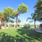 Villa Mallorca MA4750 Garten mit Palmen