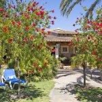 Finca Mallorca MA4170 Liegen im Garten