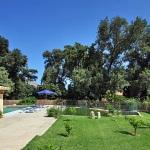 Finca Mallorca MA3350 - Garten mit Bäumen