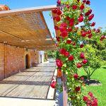 Luxus-Finca Mallorca MA3350 Terrasse mit Rosenspalier