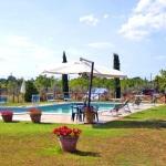 Ferienhaus Toskana TOH601 - Schwimmanlage mit Gartenansicht