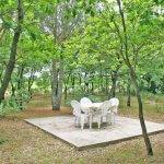 Ferienhaus Toskana TOH615 Esstisch unter Bäumen