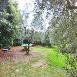 Ferienhaus Toskana TOH730 Garten