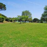 Ferienhaus Toskana TOH735 Grundstück mit Rasen