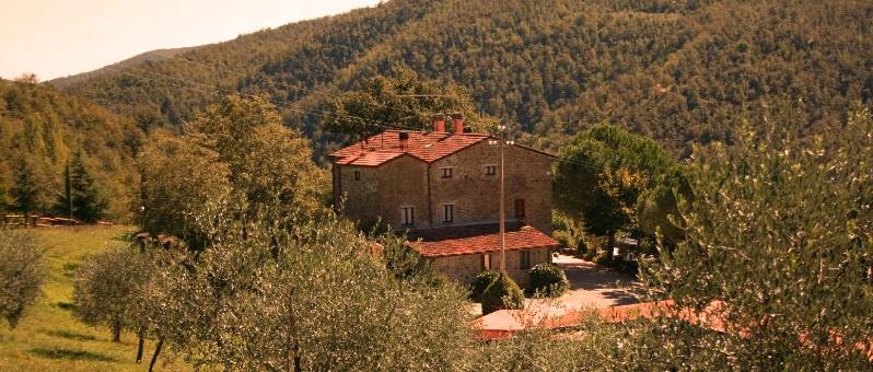 Toskana Ferienhaus TOH865 - Ferienhaus mit Umgebung
