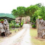 Ferienhaus Toskana TOH865 Zufahrt zum Haus