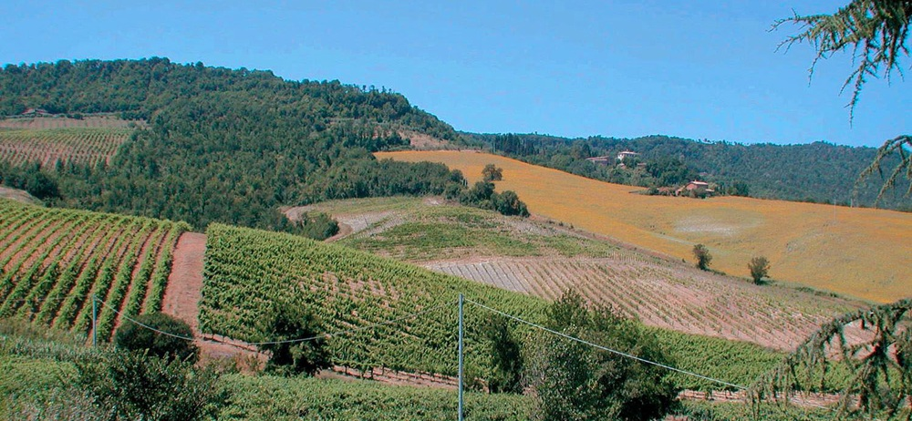 Toskana Ferienhaus TOH530 - Landschaft