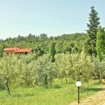Ferienhaus Toskana TOH421 - Garten
