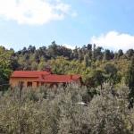 Ferienhaus Toskana TOH421 - Hausansicht