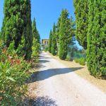Ferienhaus Toskana TOH422 Zufahrt zum Haus