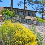 Ferienhaus Toskana TOH430 blühende Büsche