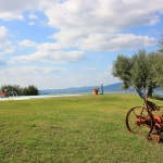 Ferienhaus Toskana TOH435 - Gartenanlage