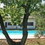 Ferienhaus Toskana TOH465 - Pool