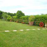 Ferienhaus Toskana am Meer TOH490 Garten mit Hecke
