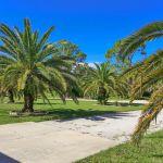Ferienhaus Florida FVE42435 Grundstück mit Palmen