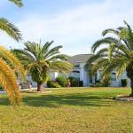 Ferienhaus Florida FVE42435 Palmen auf dem Grundstück