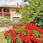 Ferienhaus Toskana TOH317 Geranien im Garten