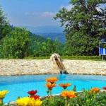 Ferienhaus Toskana TOH317 - Swimmingpool
