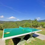 Ferienhaus Toskana TOH317 Tischtennisplatte