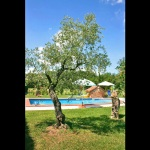 Ferienhaus Toskana TOH320 - Garten mit Pool
