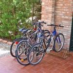 Ferienhaus Toskana TOH325 - Fahrräder