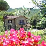 Ferienhaus Toskana TOH365 - Blick auf das Haus