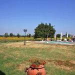 Ferienhaus Toskana TOH405 - Gartenanlage