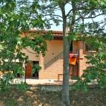 Ferienhaus Toskana TOH405 - Vorgarten