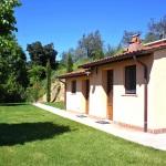 Ferienhaus Toskana TOH102 - Gartenanlage