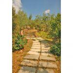 Ferienhaus Toskana TOH110 Treppe im Garten